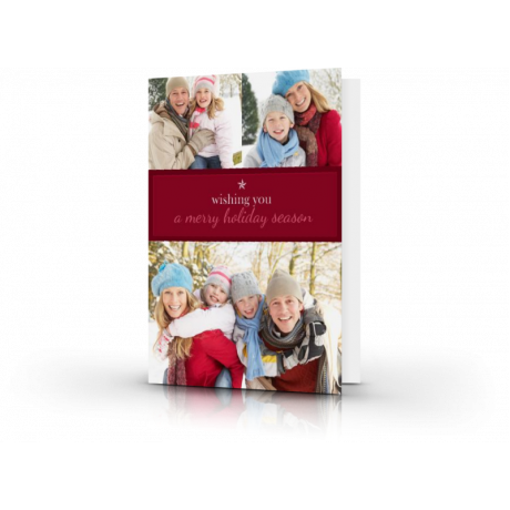 5x7 Holiday Greeting Cards & Envelopes (pack of 25)